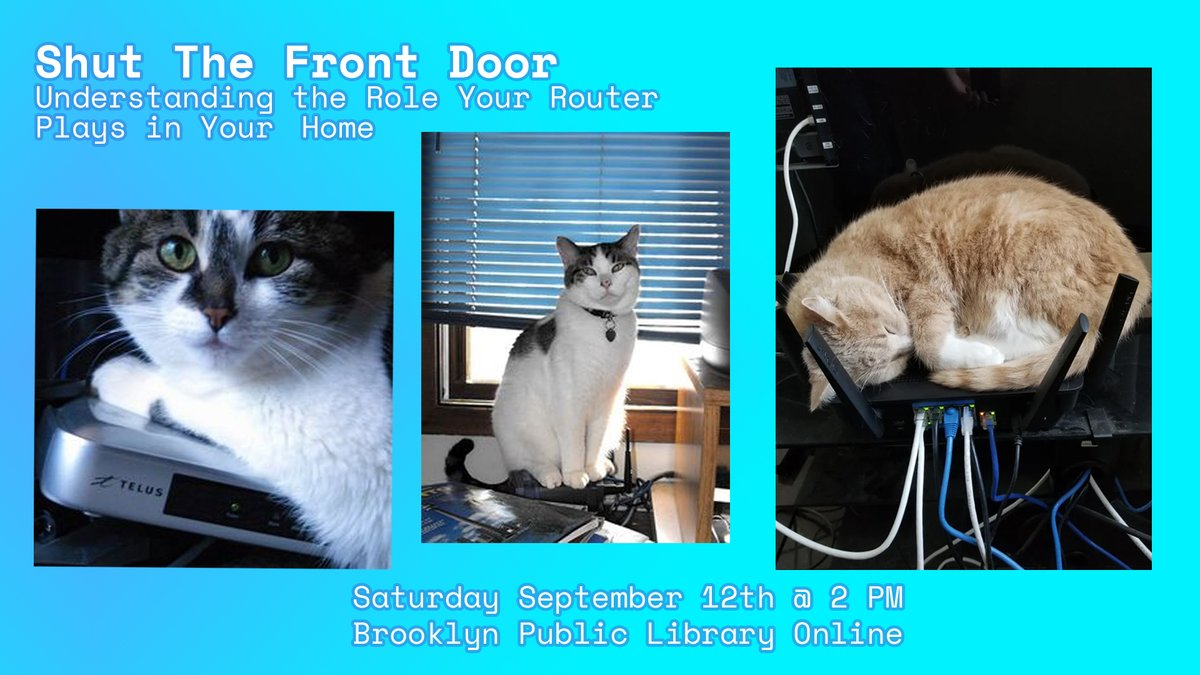 Three pictures of cats on top of computer equipment