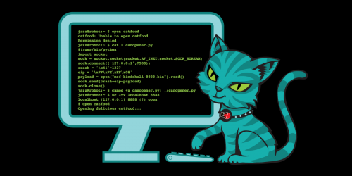 A cat shown writing a program to hack into a can of cat food.